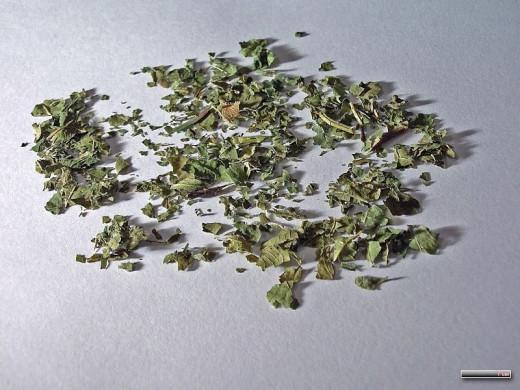 Dried Blackberry Leaves