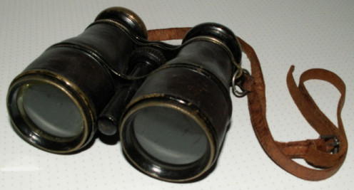 Here is a sample photo of binoculars with a neck strap. (See capsule 'Supplies/Tools that you will need gradually.')