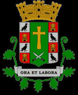Patillas, PR Coat of Arms