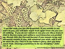 The Fruitful Lifestyle: How To Live Abundantly