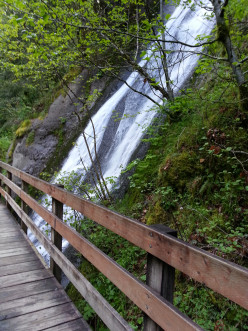 Wahclella Falls, A TrailDudes Hiking Guide