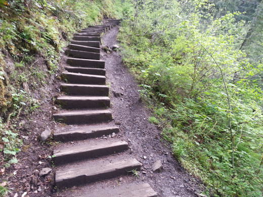 Hiking occasionally includes going up some TrailStairs.