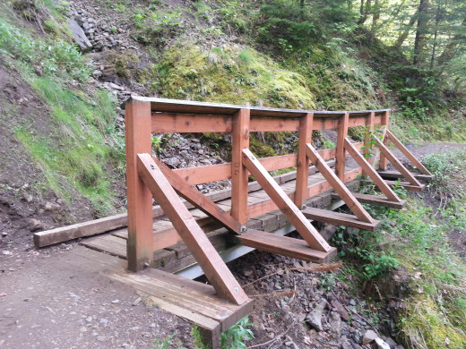 The Wahclella Falls hike is replete with bridges.