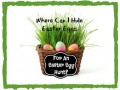 Where Can I Hide Easter Eggs for an Easter Egg Hunt and Scavenger Hunt?