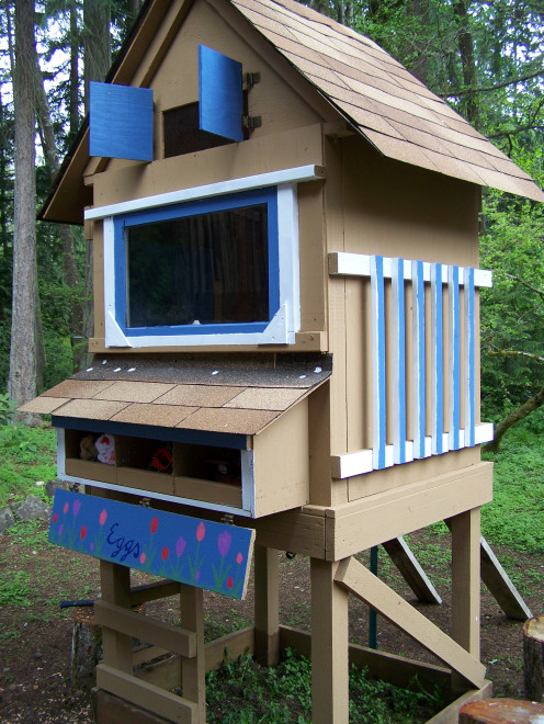 "Our coop, once a playhouse, now a chicken house (or as my son calls it a ""chicken home"")"