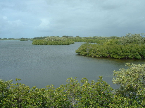 Pelican Island National Wildlife Refuge inside Sebastian Inlet State Park, just north of North Beach on Orchid Island.