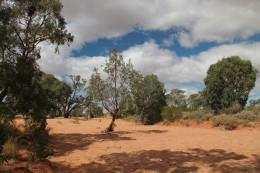 Creek bed at Silverton, New South Wales