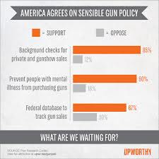 12% DON'T WANT BACKGROUND CHECKS FOR PRIVATE OR GUN SHOW SALES ... THE 12% WON!