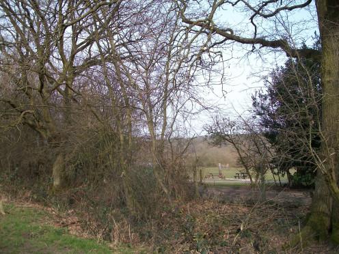 Ruislip Woods, Middlesex
