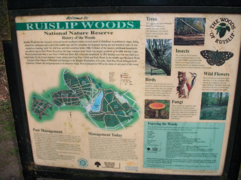 Information panel, Ruislip Woods, Middlesex