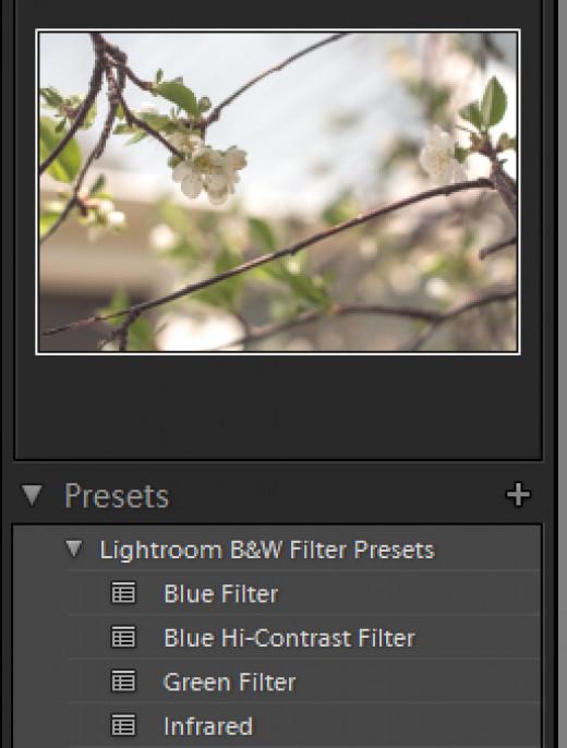 Editing photos in lightroom
