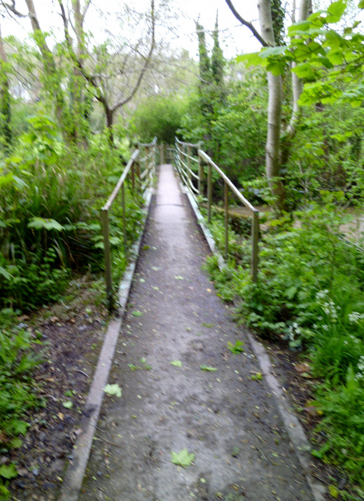 The bridge from yesteryear over which I used to walk to collect frog spawn.