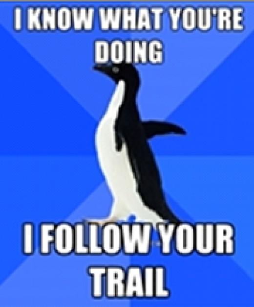 Google Penguin follows your links trail.