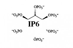 IP6 Inositol - Remarkable Anti Aging Molecule