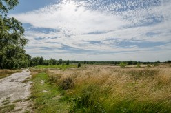 De Maasduinen National Park in the province of Limburg