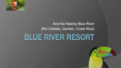Blue River Resort Review, Video and Pictures