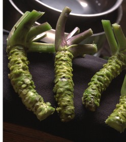Where To Get Wasabi — Best Variety