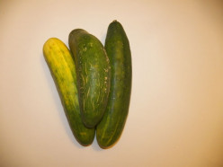 A Pickle of a Pickle:  Old Time Family Favorites