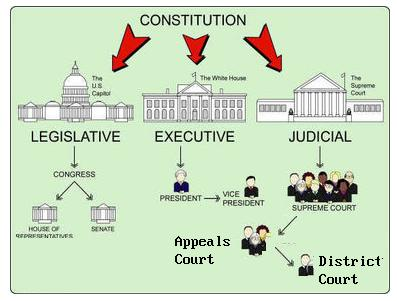 The Structure of the United States' Government