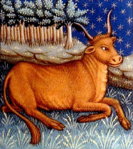 Taurus Lounging