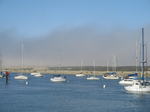 A nice display of boats outside of the harbor in Morro Bay.