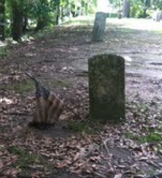 Grave of a union soldier from the American Civil War