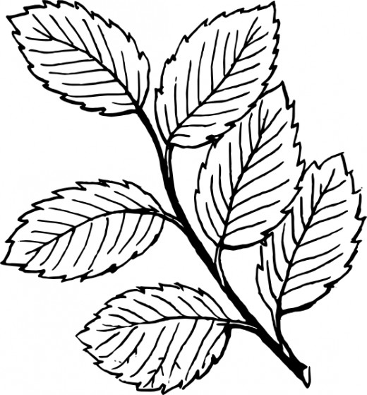 Original Clip art