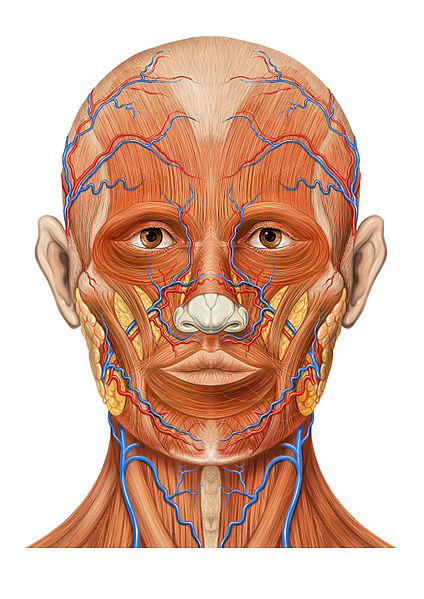 Your face can reveal many things including how healthy you are.