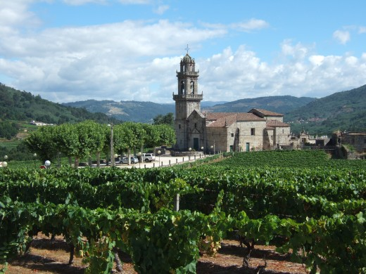 Vineyards near Beade