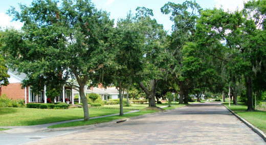 City Beautiful, Orlando Florida. Lake Ivanhoe Blvd. One of the city's better neighborhoods with fine lakefront homes, cobblestone streets and grand live oaks providing deep shade. Keith and Connie will never live anywhere close to this lifestyle