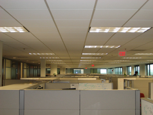 Workers' Compensation Adjusters normally work in cubicles.