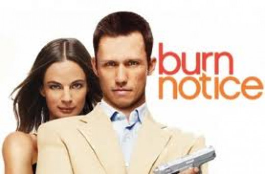 Burn Notice was a action show for the USA Network. It featured all kinds of explosions and special gadgets that helped the squad get their man.