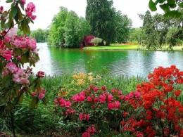 Appreciate the beauty of life