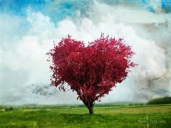 A Single Heart (Poem)