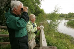 Couple watching wildlife from observation deck.