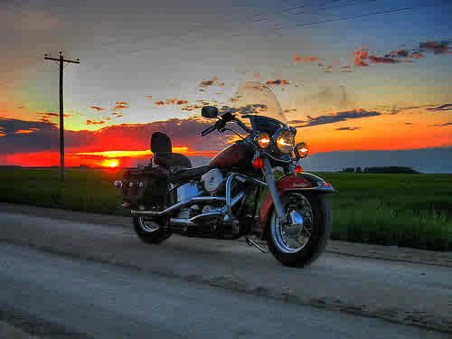 Harley at sunset