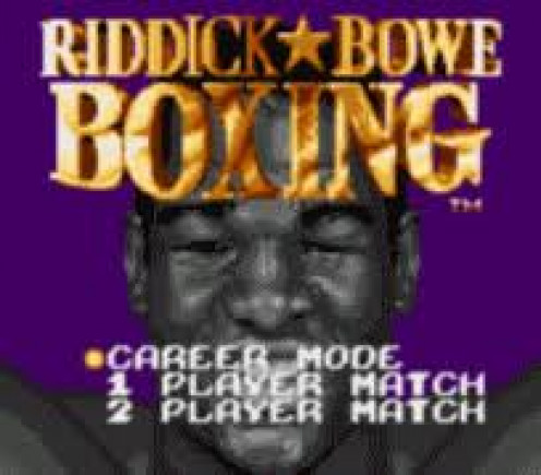 Riddick Bowe Boxing on the Gameboy was a boxing game featuring one on one heavyweight bouts. You can jab, uppercut and throw hooks with both hands in this prizefighting video game.