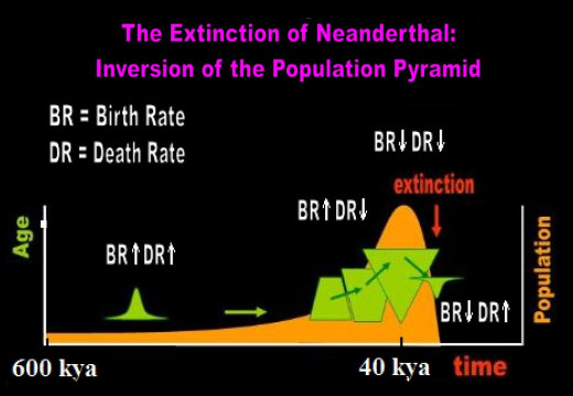 How the Neanderthals became extinct