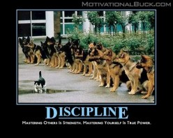 Discipline – The Secret Sauce For Success