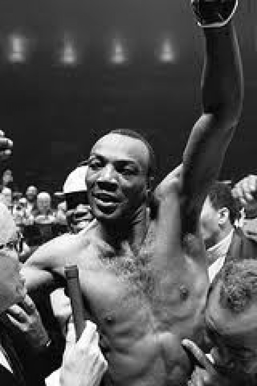 Bob Foster was the light heavyweight champion of the world.He knocked out Dick Tiger for his laurels.