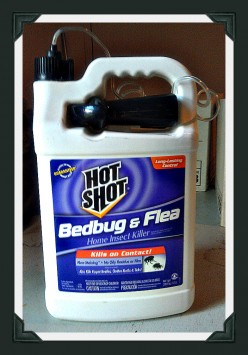 Hot Shot Bed Bug Spray Review
