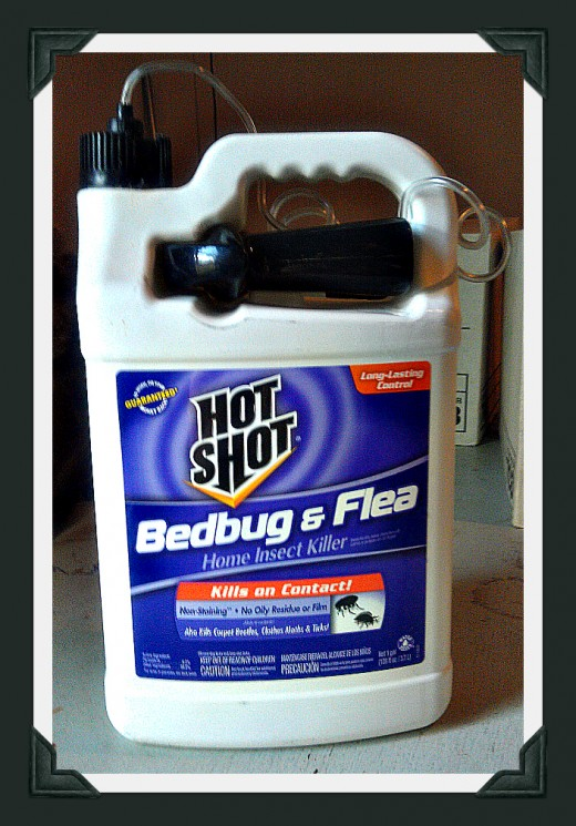 Bottle of bed bug and flea spray.