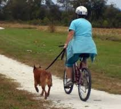 If you get tired, ride a bicycle while your pet runs next to you. You can still get an exercise while your pet does to.