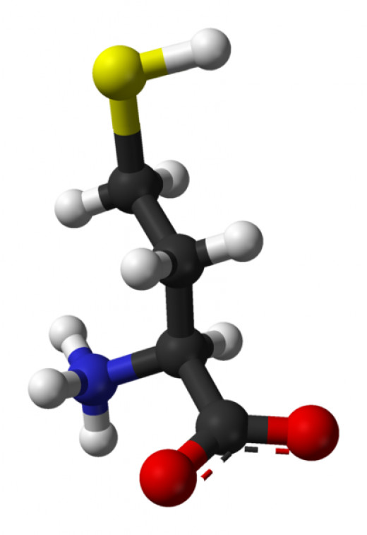 Homocysteine By Ben Mills and Jynto [Public domain], via Wikimedia Commons