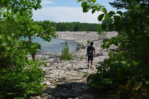My son walk from a forest on to a cobble beach.