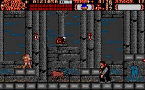 Castlevania has vampires, bats, snakes and other out of this world creatures trying to attack at all times.