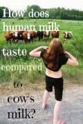 An Experiment Comparing The Taste of Cow's Milk to Human Breast Milk