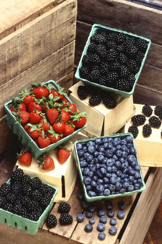 Many berries are not as sugary as they taste.  As good as they taste, they also have a high concentration of vitamins and antioxidants.
