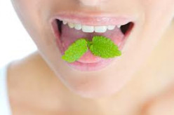 Effective remedies for bad breath