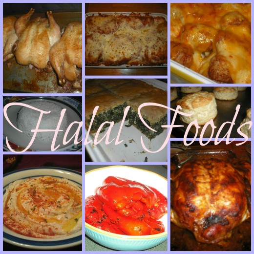 There is an infinite variety of halal foods!
